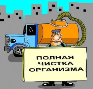 очистить организм от токсинов паразитов