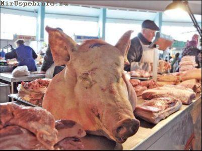 Холодець зі свинячих ніжок рецепт