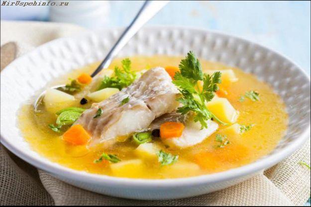 Диетический рыбный суп с сельдереем