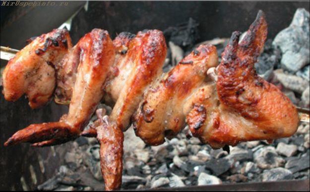 luchshie-recepty-marinada-dlja-kurinogo-shashlyka