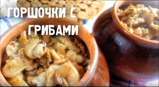 mjaso-v-gorshochkah-klassicheskie-recepty-s-kartoshkoj-prigotovlennye-v-duhovke