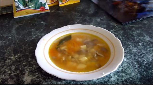 gribnoj-sup-iz-veshenok