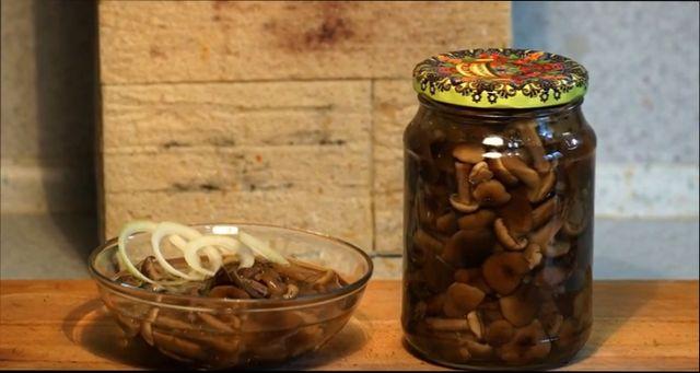 Как приготовить опята - самые интересные рецепты блюд на каждый день и заготовки грибов впрок