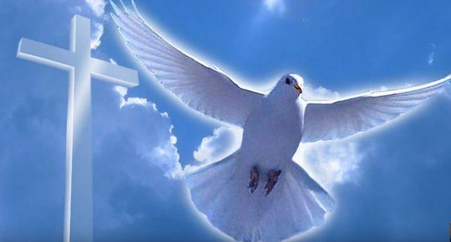 Крещение Господне 2018. Что необходимо знать! Xkreshhenie_11.jpg.pagespeed.ic.86SYrWrUiU