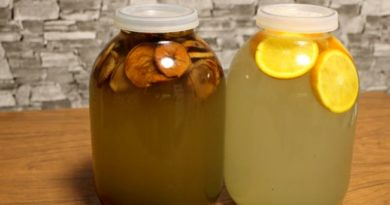 Как собирать, законсервировать и хранить березовый сок в домашних условиях