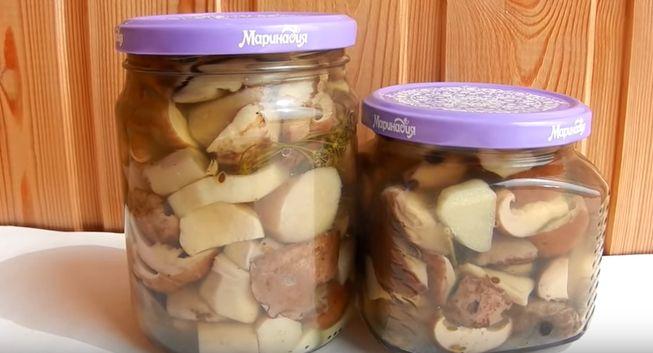 грибы маринованные на зиму - 7 лучших рецептов приготовления