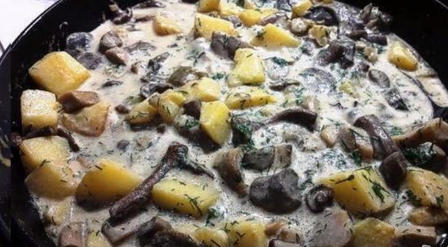 Рецепт жареной картошки с лисичками в сметане