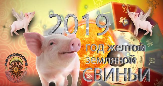 Гороскоп на новый 2019 год по году рождения и знакам зодиака
