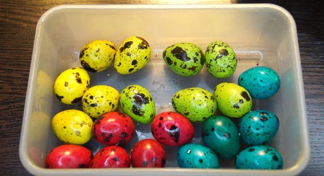 Красим перепелиные яйца