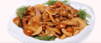 маринованные грибы опята