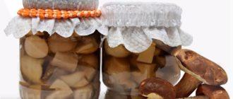 маринуем белые грибы